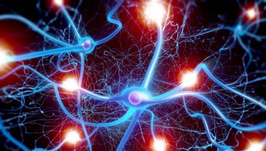 Демиелинизирующее заболевание головного мозга: виды, симптомы, лечение