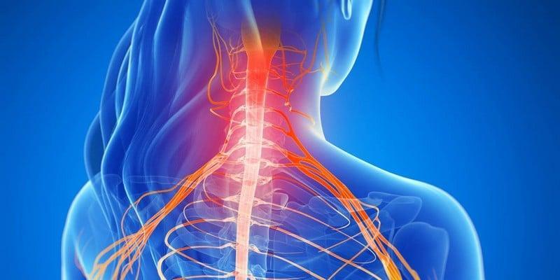 Миелопатия шейного, грудного, поясничного отдела позвоночника. Миелорадикулопатия